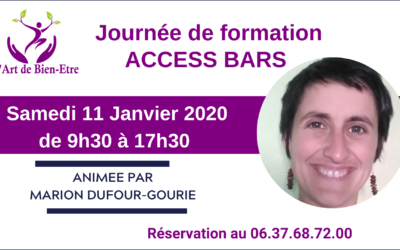 Journée de formation Access Bars